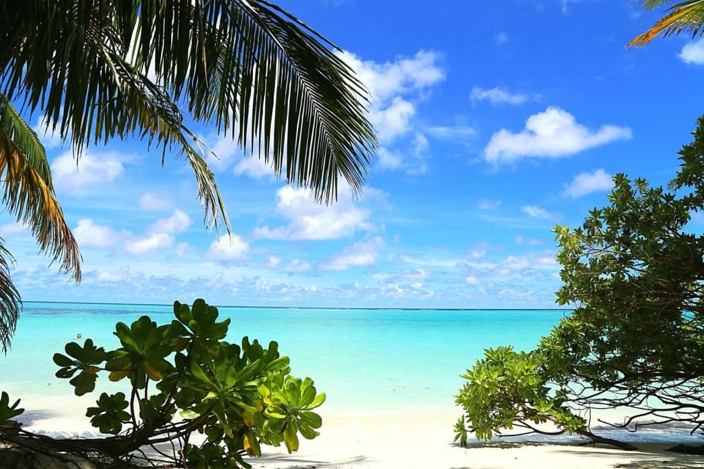 thoddoo_beach