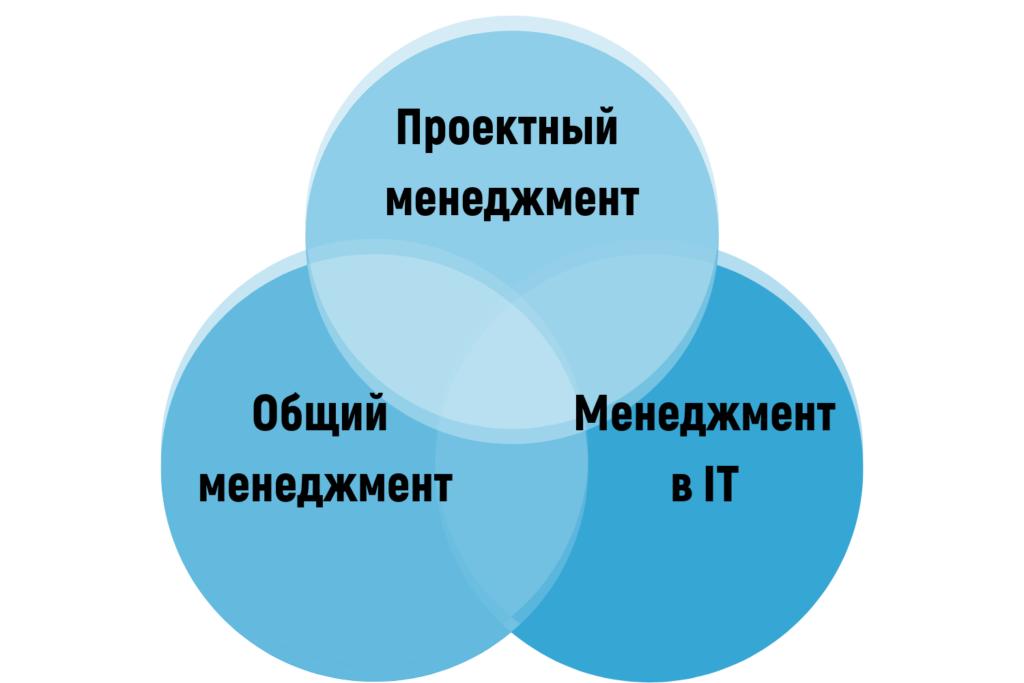 Основные компетенции менеджера в IT